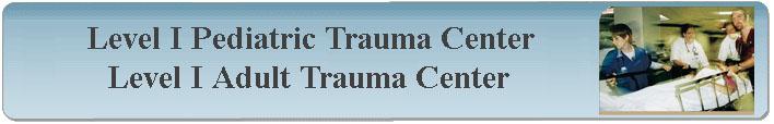 Regions Hospital Trauma Programs